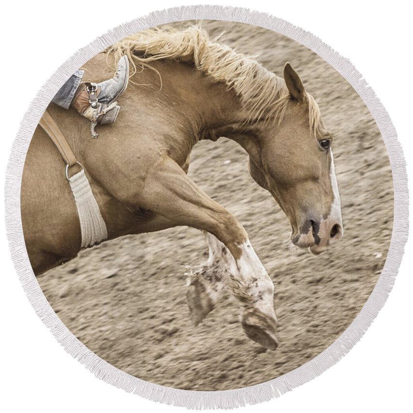 Rodeo Round Beach Towel featuring the photograph Wild Ride by Caitlyn Grasso