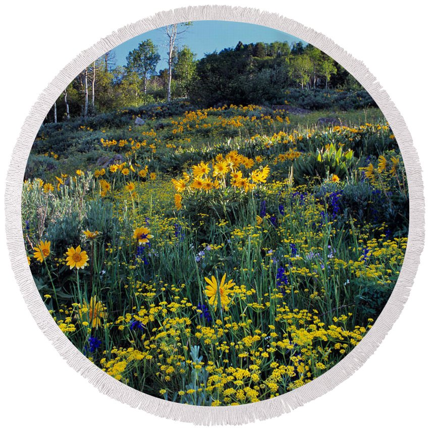 Spring Flowers Round Beach Towel featuring the photograph Wildflower Hillside by Leland D Howard