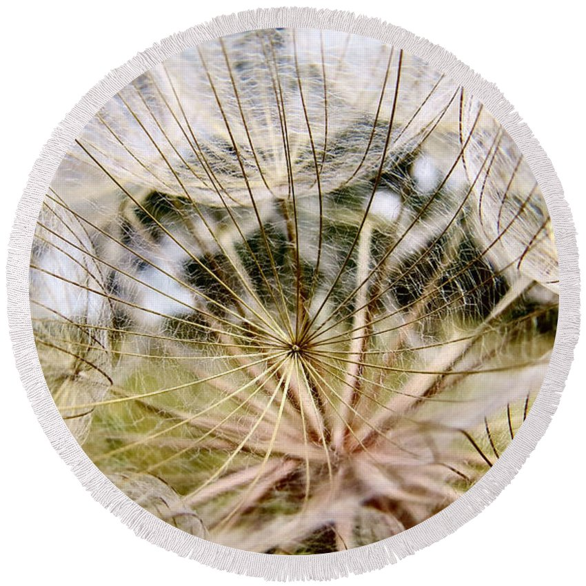 Nature Round Beach Towel featuring the photograph Wind Songs by Art Dingo