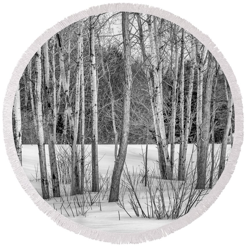 Black Round Beach Towel featuring the photograph Winter Birches by Pat Lucas