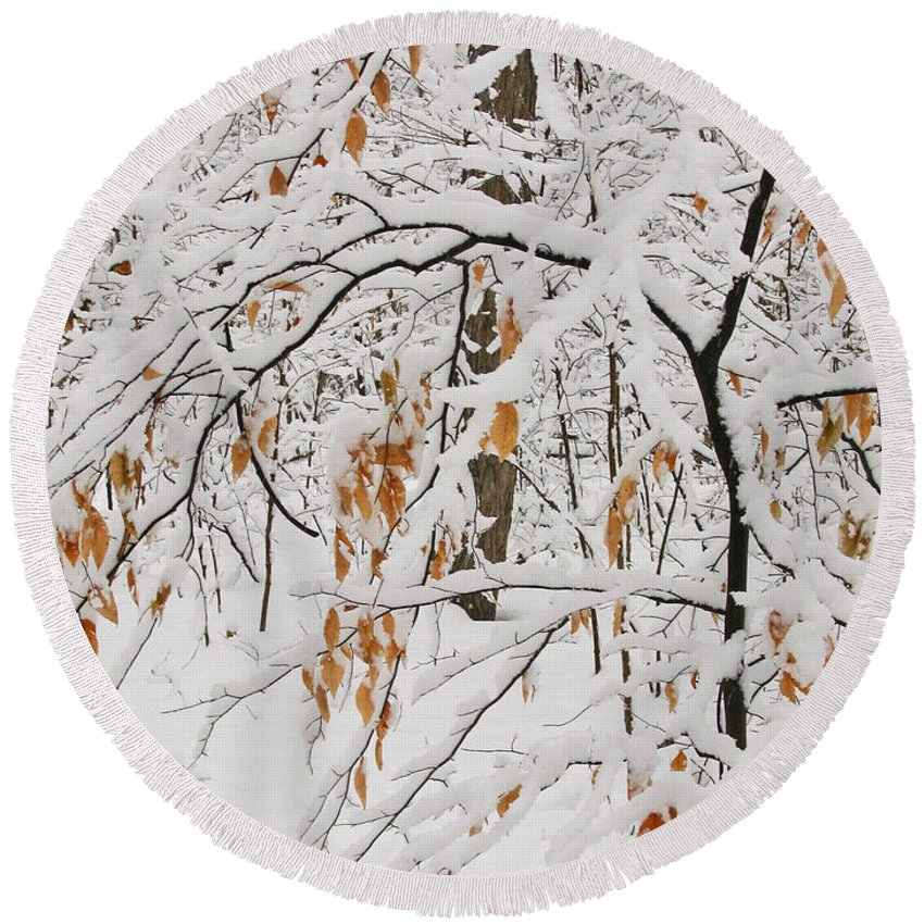 Winter Round Beach Towel featuring the photograph Winter Branches by Ann Horn