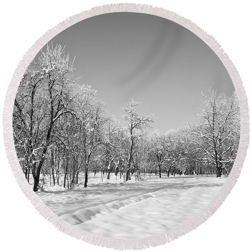 Beautiful Round Beach Towel featuring the photograph Winter Landscape In Bw by Dan Radi