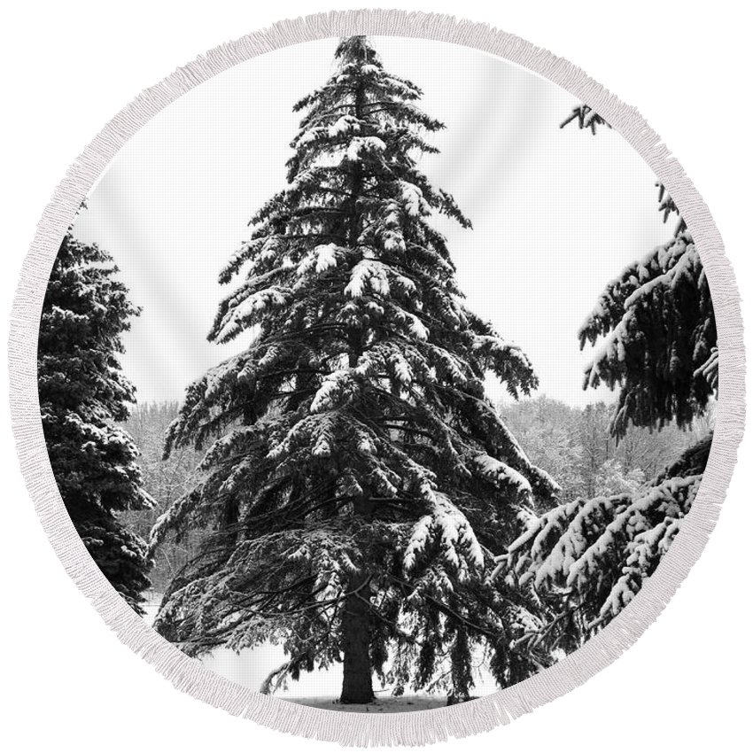 Winter Round Beach Towel featuring the photograph Winter Pines by Ann Horn
