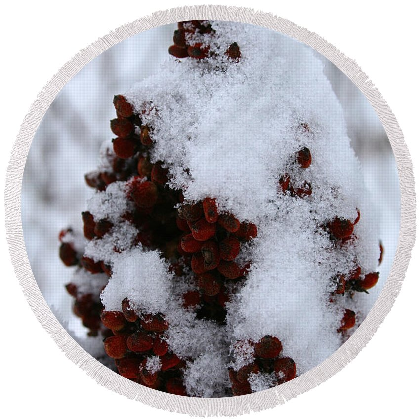 Flower Round Beach Towel featuring the photograph Winter Sumac by Susan Herber