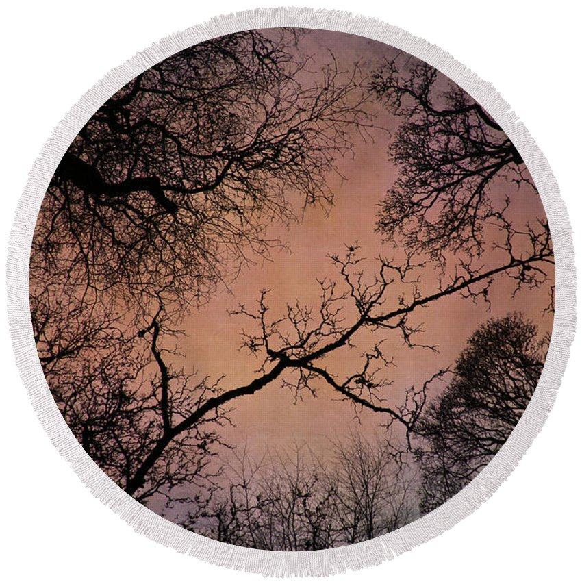 Leaves Round Beach Towel featuring the photograph Winter Tree Canopy by David Pringle