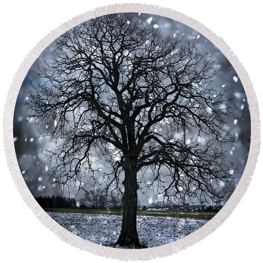 Lonely Round Beach Towel featuring the photograph Winter Tree In Snowfall by Elena Elisseeva