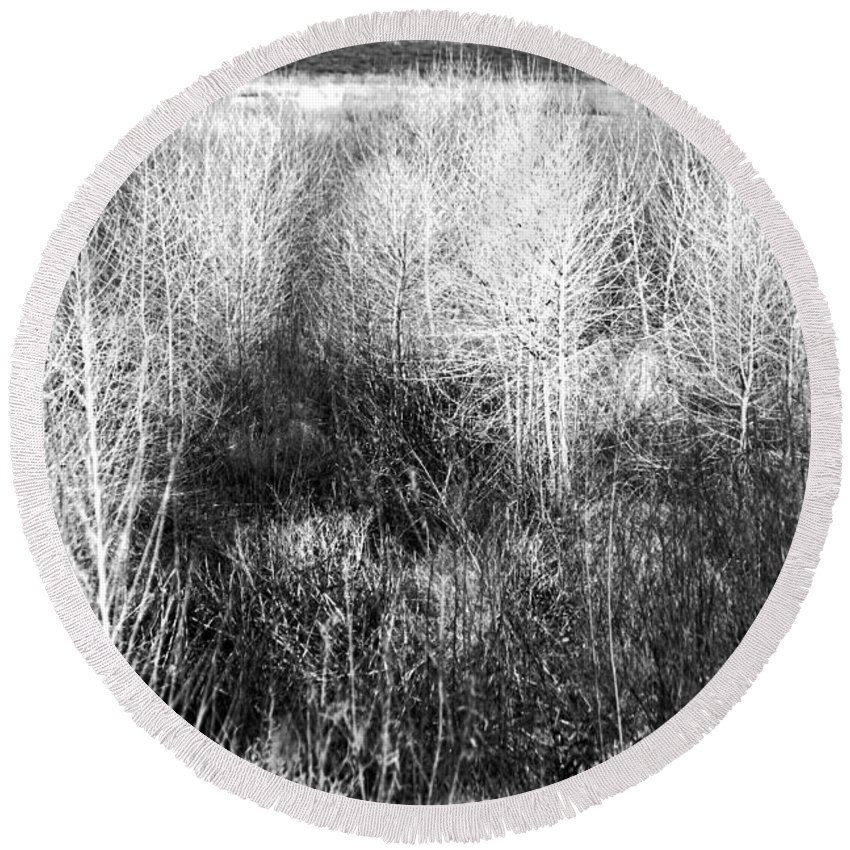 Roena King Round Beach Towel featuring the photograph Winter Trees B And W 5 by Roena King