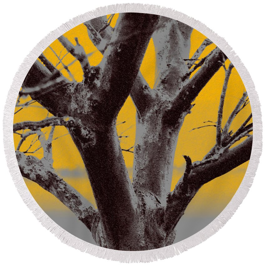 Tree Art Round Beach Towel featuring the photograph Winter Trees In Yellow Gray Mist 2 by Olivia Novak
