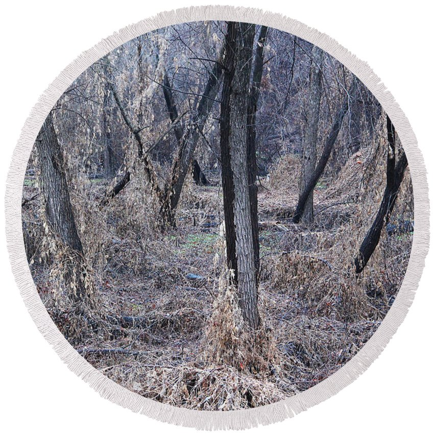 Winter Round Beach Towel featuring the photograph Winter Woods In Missouri 1 by Greg Matchick