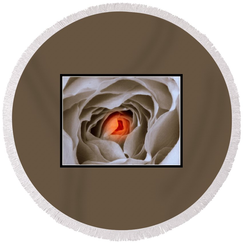 Rose Round Beach Towel featuring the photograph Within A Rose by Kathy Barney