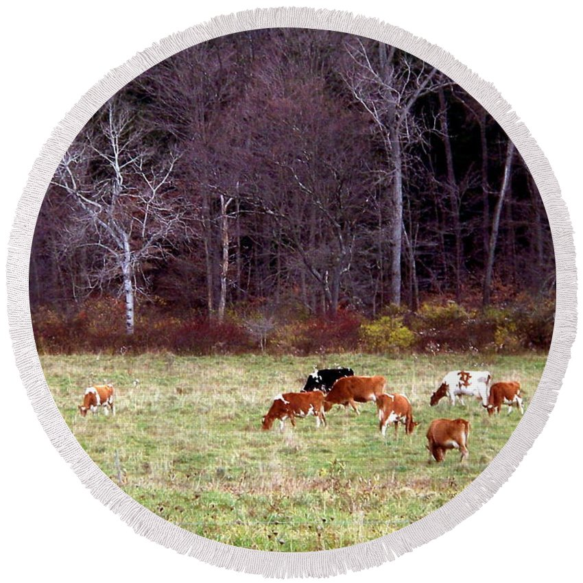 New York Round Beach Towel featuring the photograph Woodland Dairy by Christian Mattison