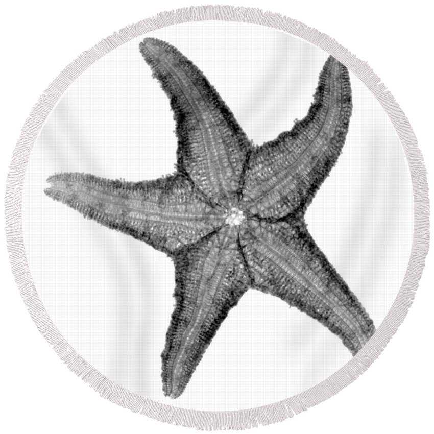Radiograph Round Beach Towel featuring the photograph X-ray Of Starfish by Bert Myers