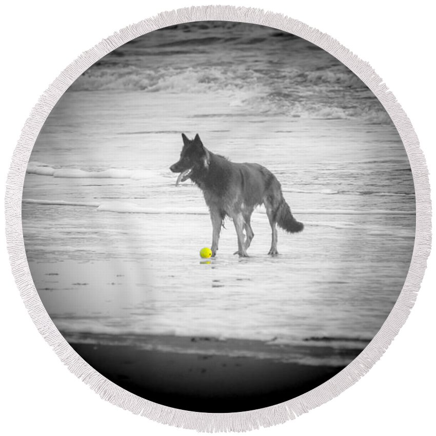 Dog Round Beach Towel featuring the photograph Yellow Ball by Alex Hiemstra