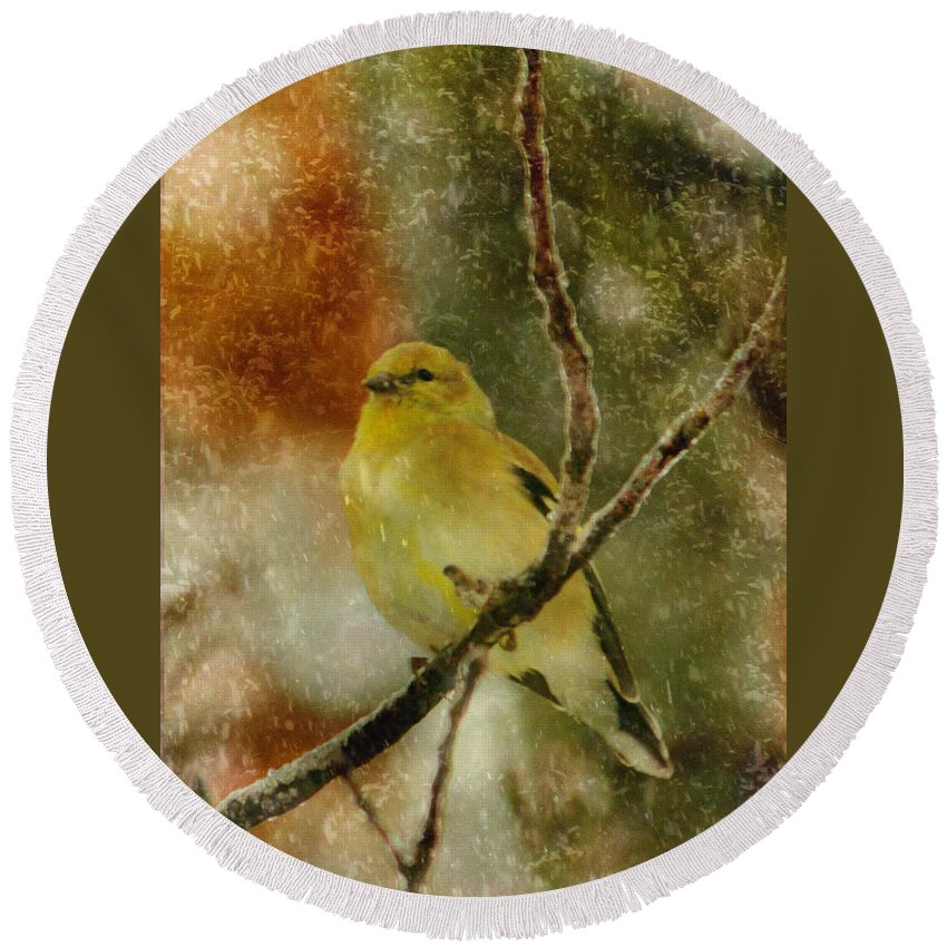 Yellow Bird Round Beach Towel featuring the photograph Yellow Bird by Karen Beasley