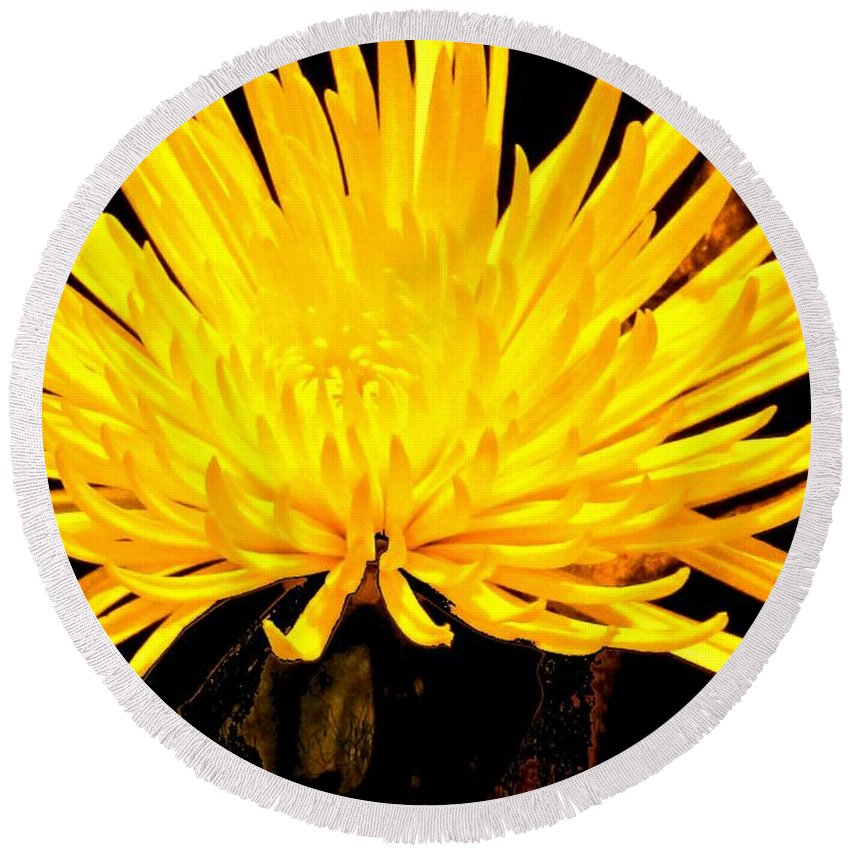 Yellow Round Beach Towel featuring the photograph Yellow Flash by Ian MacDonald