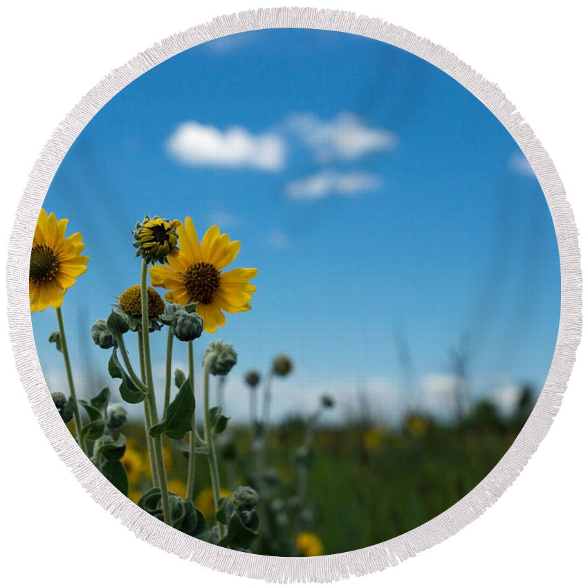 Yellow Round Beach Towel featuring the photograph Yellow Flower On Blue Sky by Photographic Arts And Design Studio