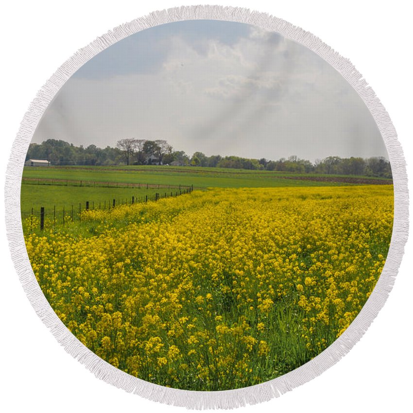 Yellow Round Beach Towel featuring the photograph Yellow Flowers In A Field by Bill Cannon