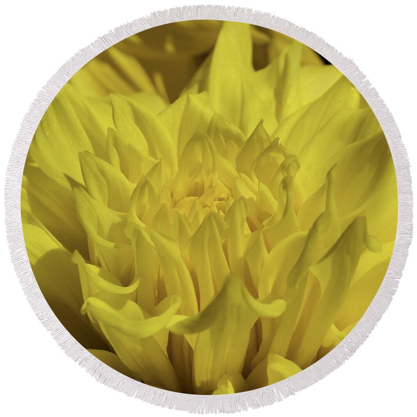 Abstract Round Beach Towel featuring the photograph Yellow It Is by Joe Geraci