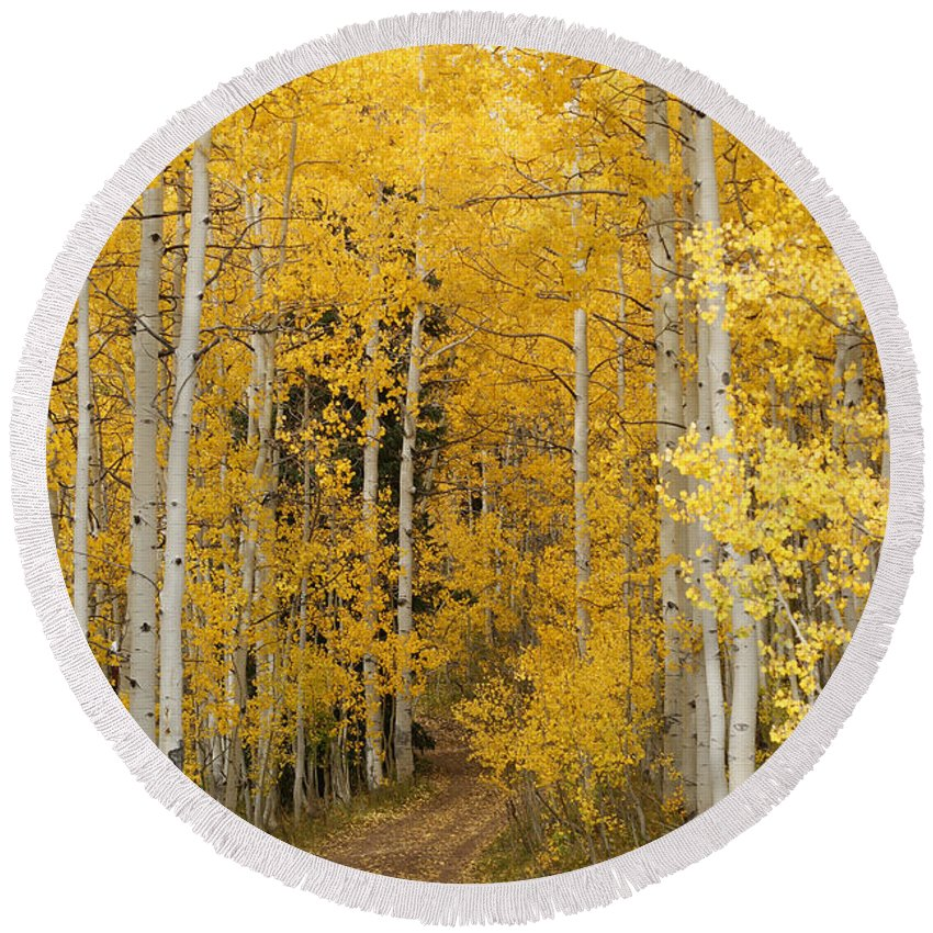 Yellow Leaf Road Round Beach Towel featuring the photograph Yellow Leaf Road by Ernie Echols