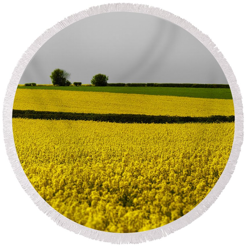 Country Round Beach Towel featuring the photograph Yellow Mellow by Svetlana Sewell