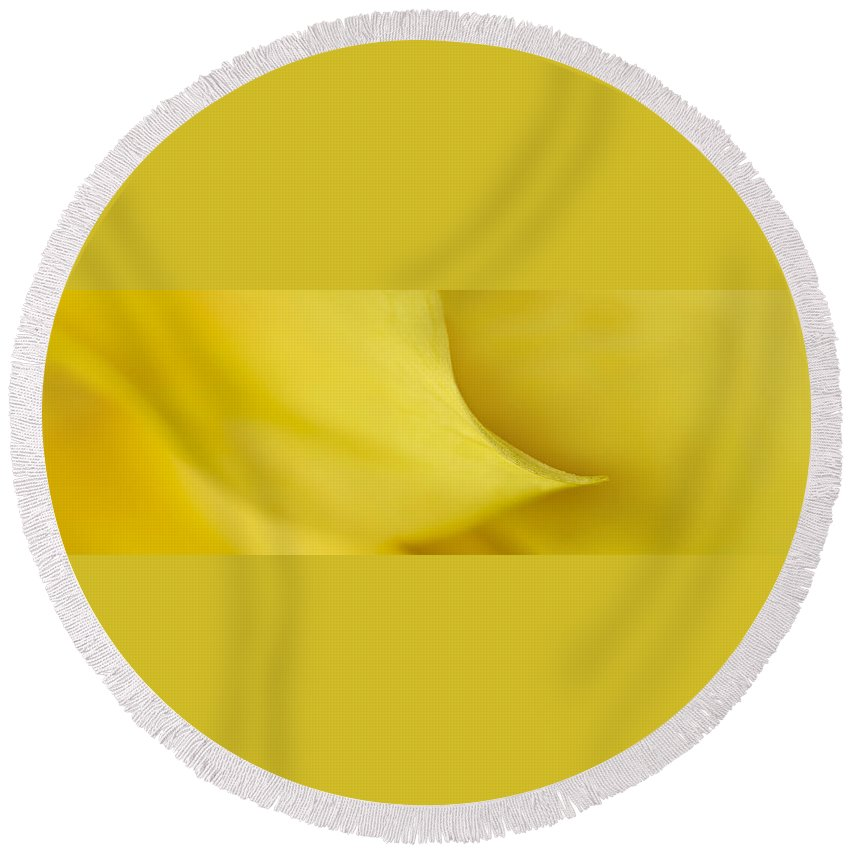 Plant Round Beach Towel featuring the photograph Yellow Petal Sweep by Mary Jo Allen