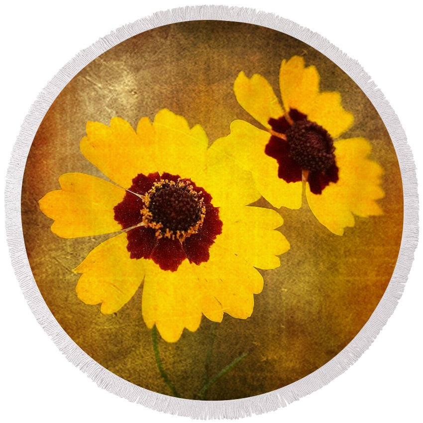 Flower Round Beach Towel featuring the photograph Yellow Prize by Scott Pellegrin