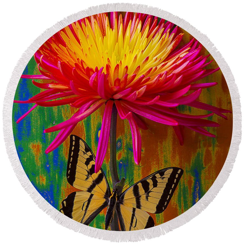 Red Yellow Spider Round Beach Towel featuring the photograph Yellow Red Mum With Yellow Black Butterfly by Garry Gay