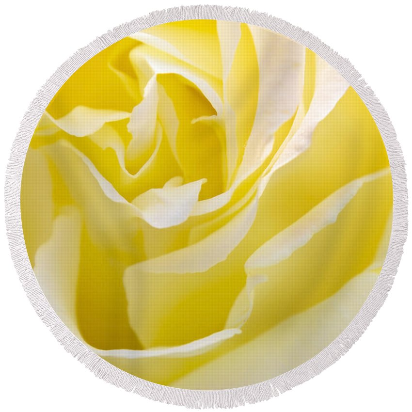 Rose Round Beach Towel featuring the photograph Yellow Rose by Svetlana Sewell