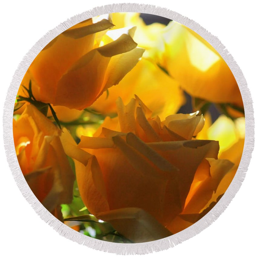 Yellow Roses Round Beach Towel featuring the photograph Yellow Roses And Light by Carol Groenen