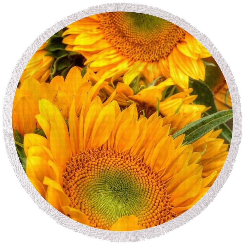 Yellow Sun Flower Round Beach Towel featuring the photograph Yellow Sun Flower Burst by Susan Garren