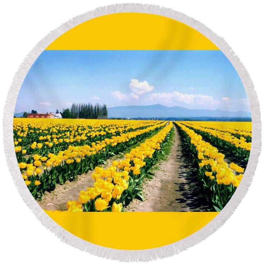 Yellow Tulips Round Beach Towel featuring the photograph Yellow Tulips by Loren McNamara