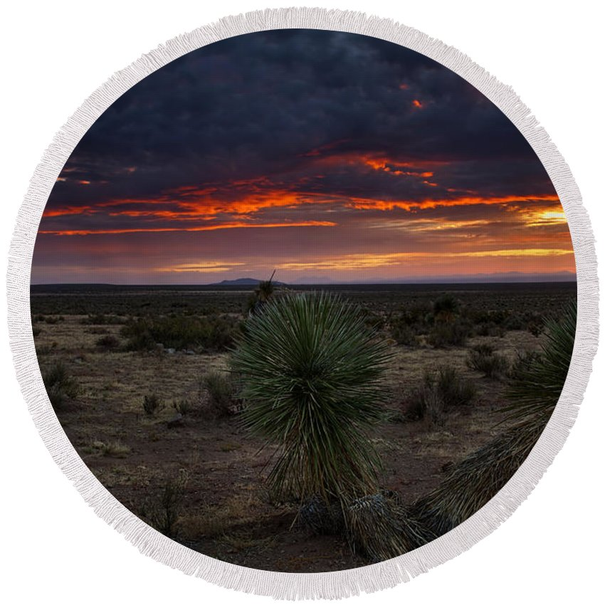 Chihuahuan Desert Beach Products