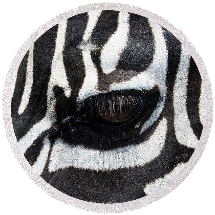 Zebra Round Beach Towel featuring the photograph Zebra Eye by Linda Sannuti