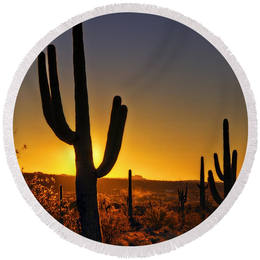 Sunrise Round Beach Towel featuring the photograph A Saguaro Sunrise by Saija Lehtonen