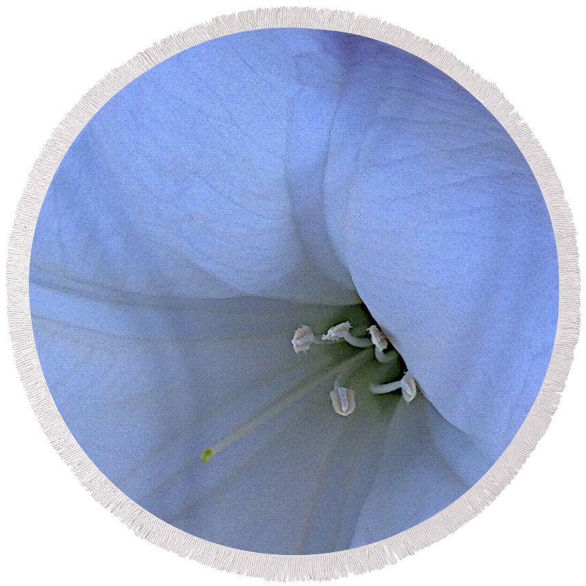 Moonflower Round Beach Towel featuring the photograph Blue by Joseph Yarbrough