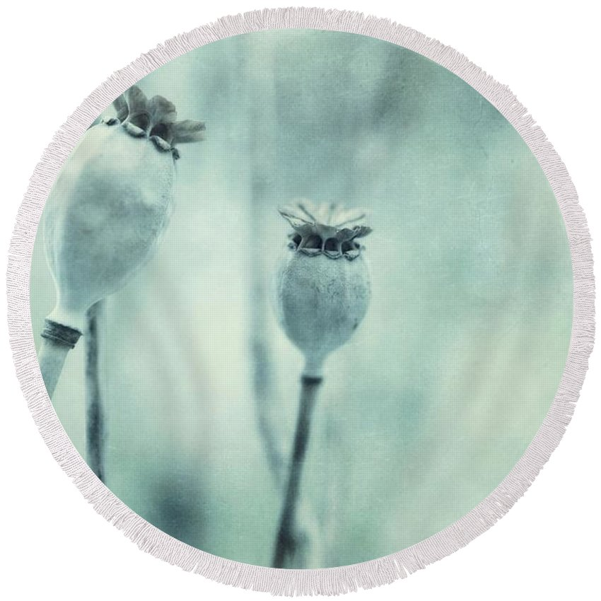 Poppy Round Beach Towel featuring the photograph Capsule Series by Priska Wettstein