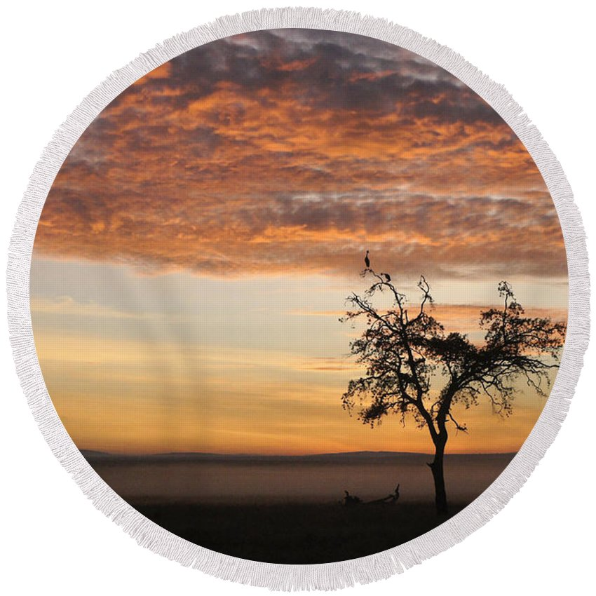 Africa Round Beach Towel featuring the photograph Crowned Cranes At Sunrise by Michele Burgess