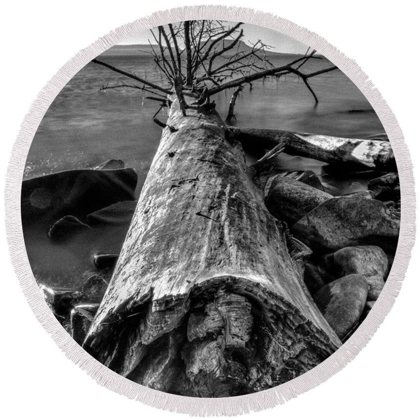 Autumn Round Beach Towel featuring the photograph Driftwood by Jakub Sisak