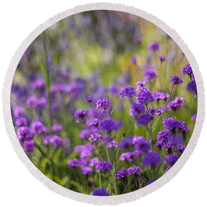 Flower Round Beach Towel featuring the photograph Field Of Spring by Mike Reid