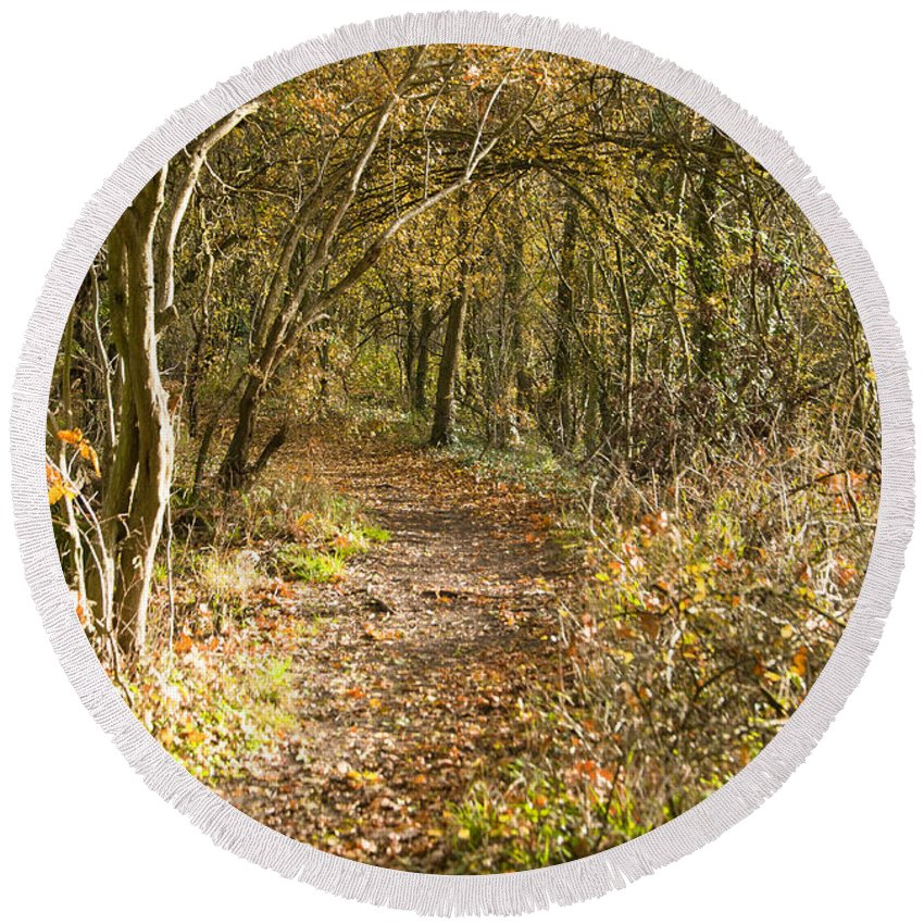 Britain Round Beach Towel featuring the photograph Forest Path by Andrew Michael