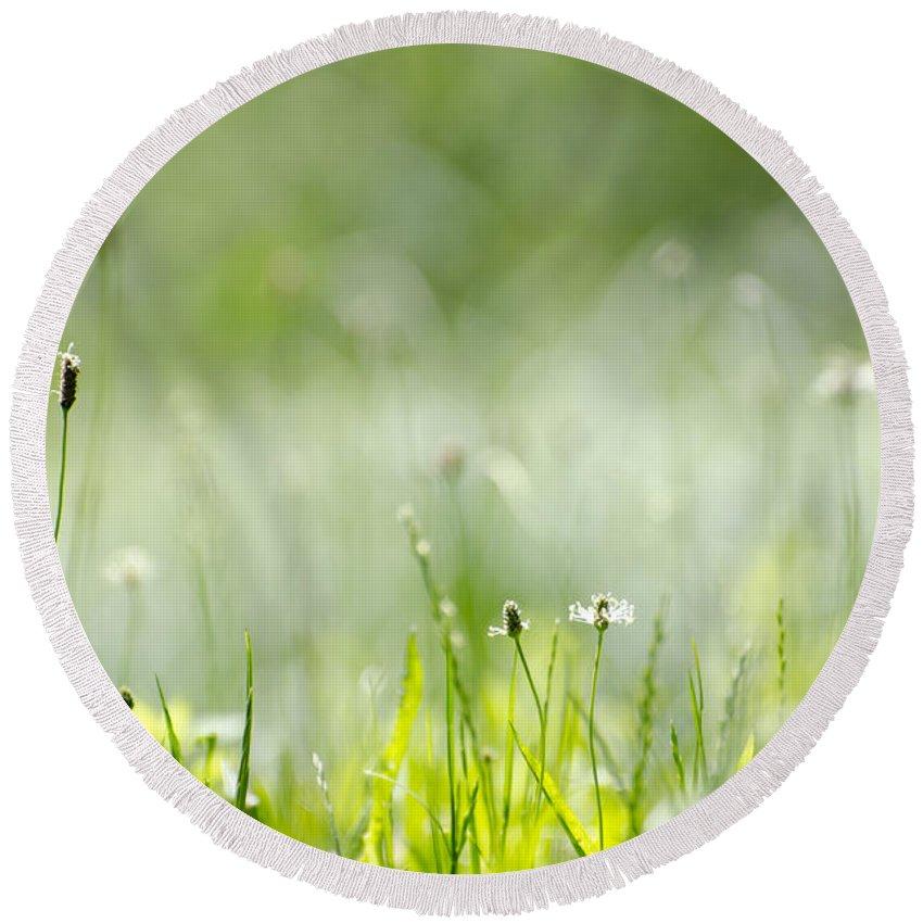 Grass Round Beach Towel featuring the photograph Green Grass by Mats Silvan