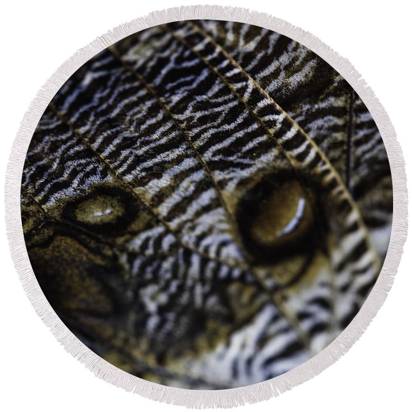 Mournful Owl Round Beach Towel featuring the photograph Mournful Owl Butterfly by Perla Copernik