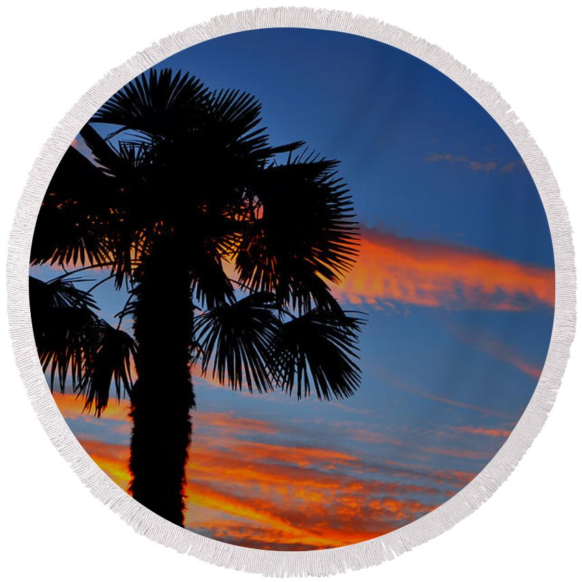Palm Tree Round Beach Towel featuring the photograph Palm Tree by Mats Silvan