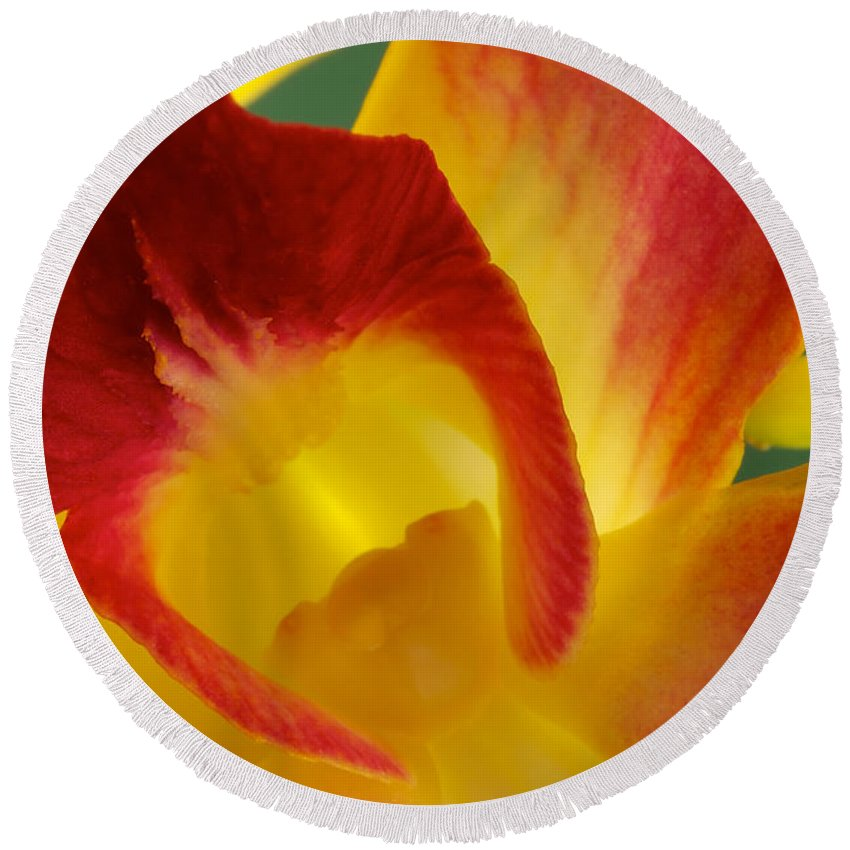 Dendrobium Round Beach Towel featuring the photograph Photograph Of A Hope Orchid Flower by Perla Copernik