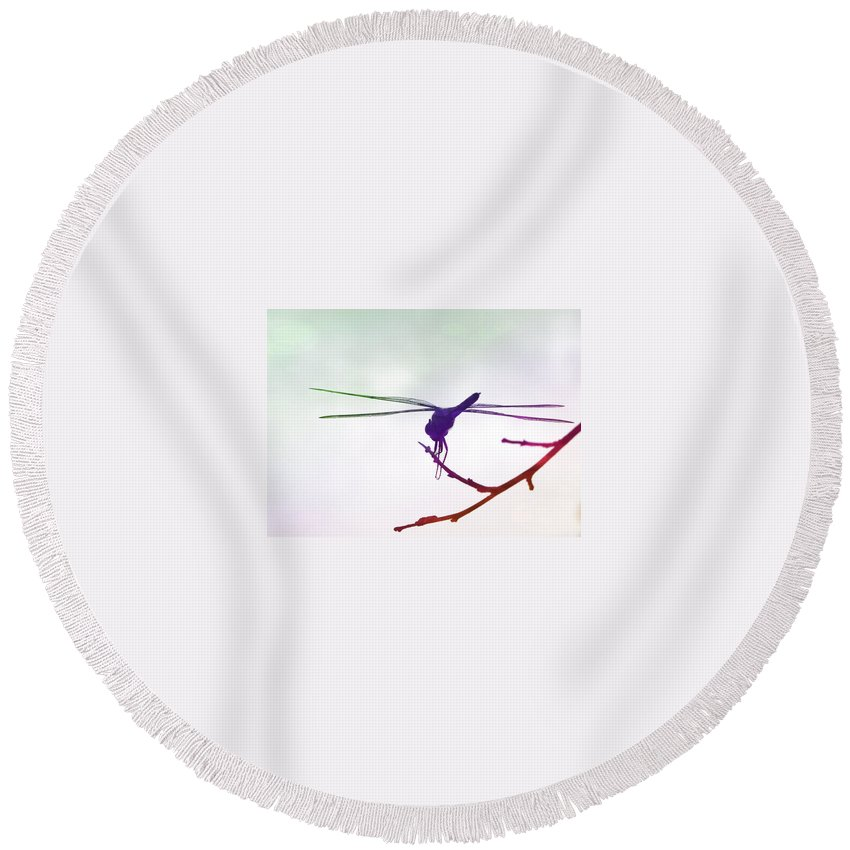 Round Beach Towel featuring the photograph Rainbow by Michele Nelson