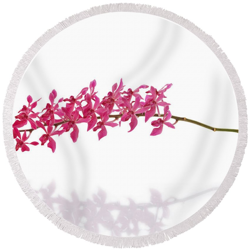 Spa-treatment Round Beach Towel featuring the photograph Red Orchid by Atiketta Sangasaeng