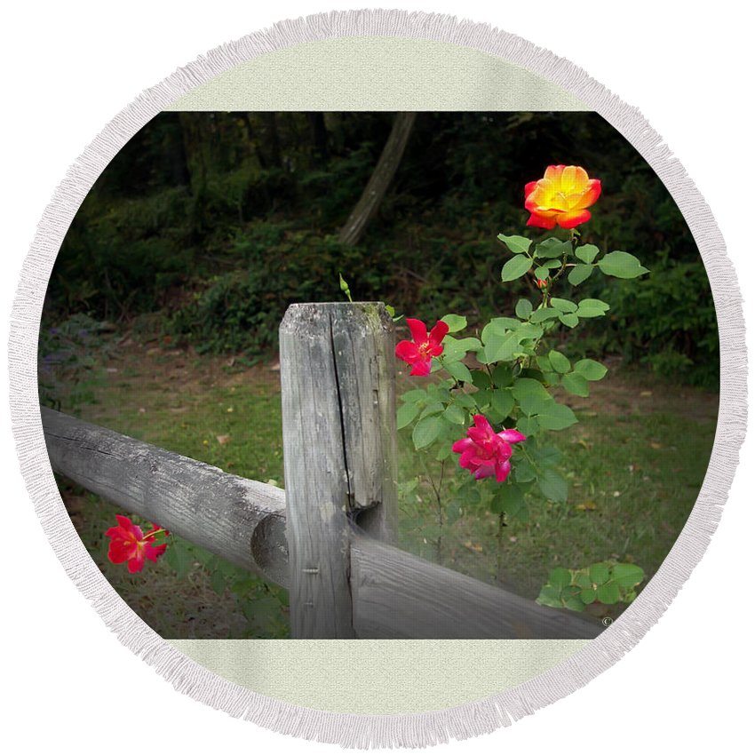 2d Round Beach Towel featuring the photograph Roses And Fence by Brian Wallace