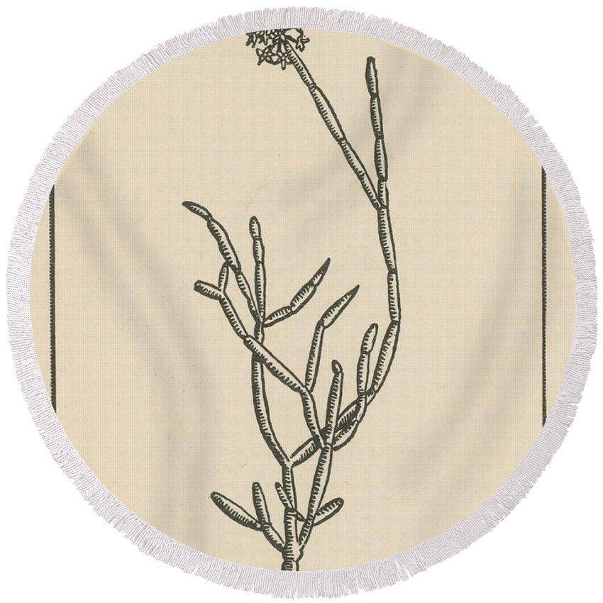 Soma Plant Round Beach Towel