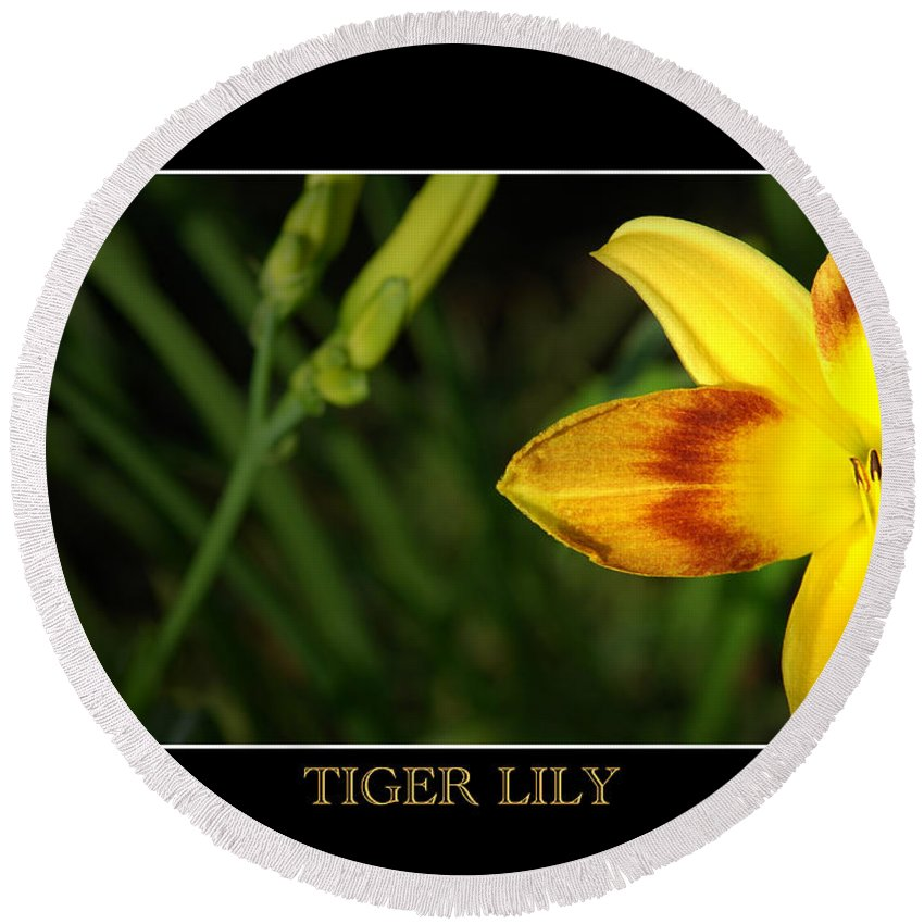 Flower Round Beach Towel featuring the photograph Tiger Lily by David Weeks