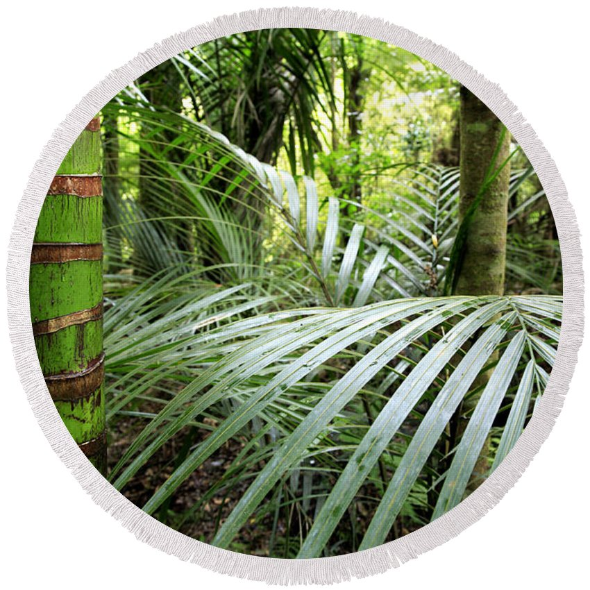 Environment Round Beach Towel featuring the photograph Tropical Jungle by Les Cunliffe